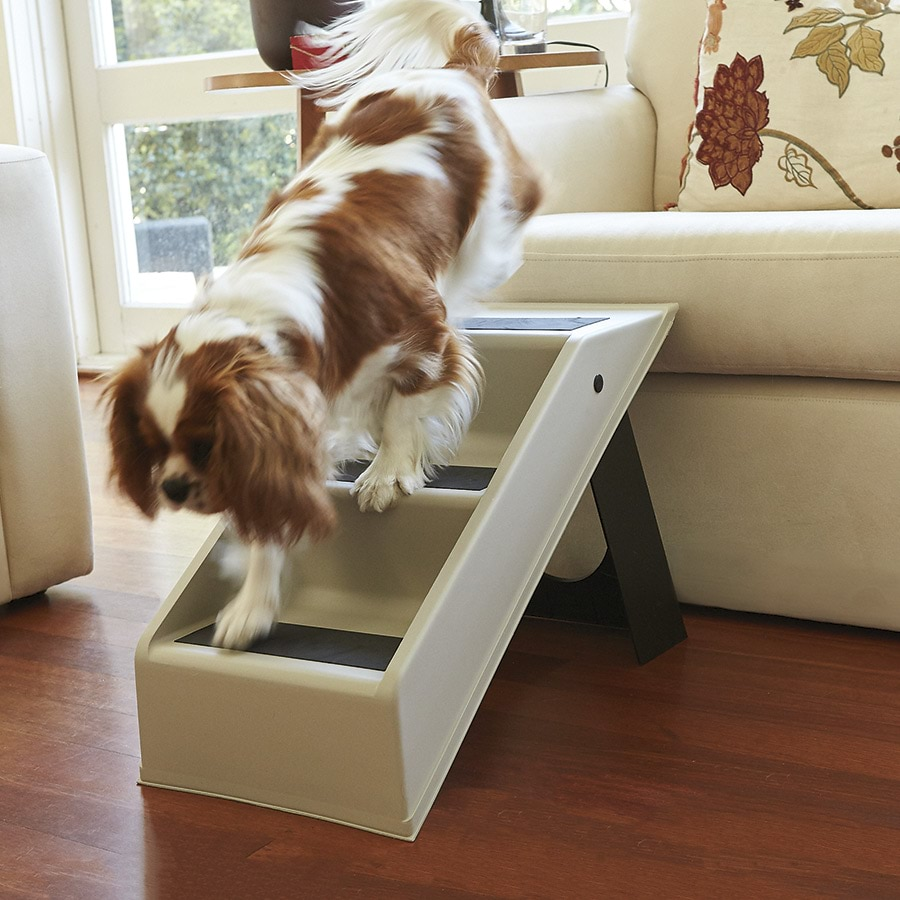 Portable Pet Steps Innovations
