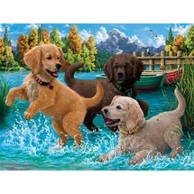 Puppies Make A Splash
