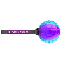 Push to Mute Ball Dog Toy